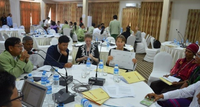 Groups discuss REDD+ benefits and risks at Myanmar Safeguards Roadmap Workshop